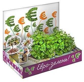 Подарки экологам. Интересные корпоративные подарки на день