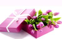 Сценарий праздника 8 марта на полу разложены большие цветы настенные живые цветы