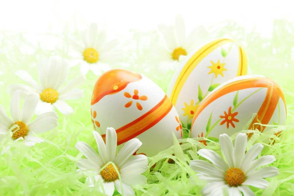 Яйца и цветы