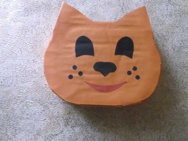 Органайзер для школьника кот МК 11