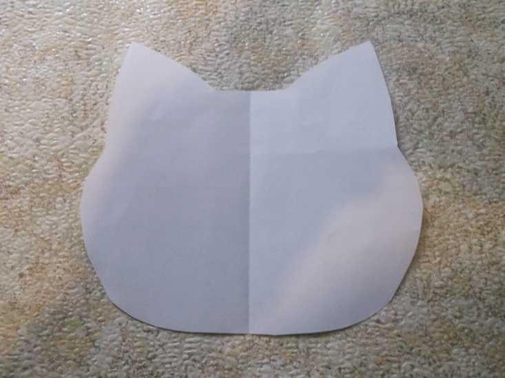 Органайзер для школьника кот МК 2