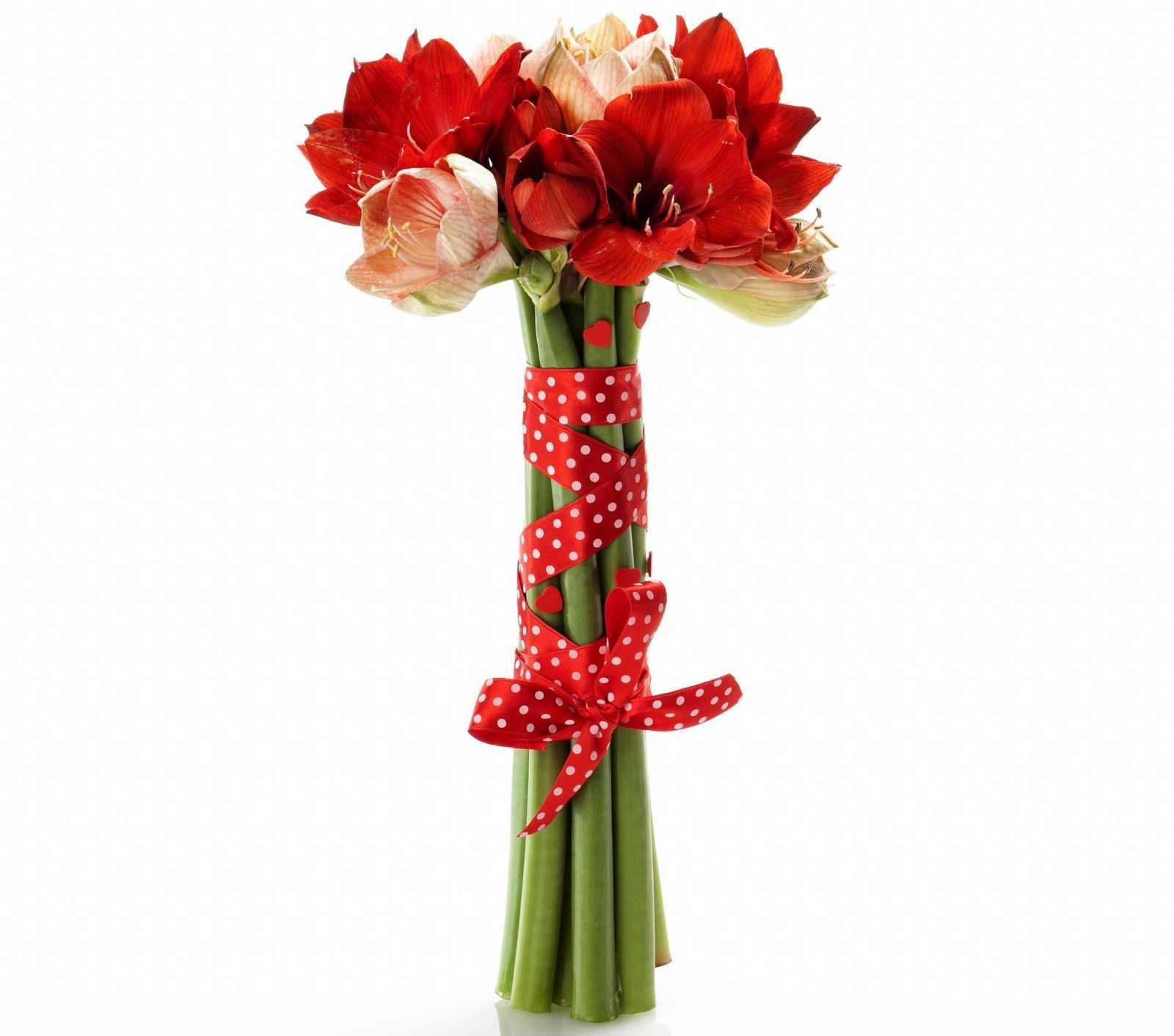 Какие цветы дарят мужчине на день рождения фото