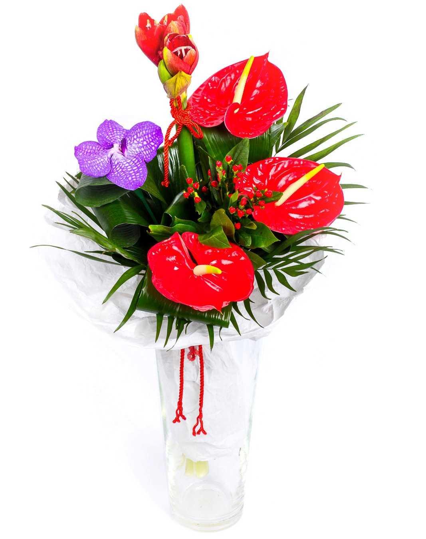 Какие цветы подарить девушке название и фото