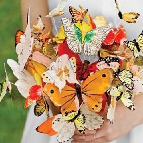 Бабочеки