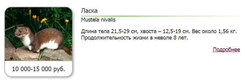 podarok_muzhu_u_kotorogo_vsyo_est4
