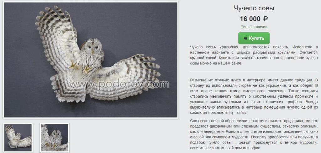 Чучело совы